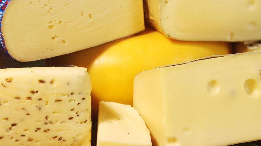 17914c35 Ny forskning trækker ost ud af skammekrogen