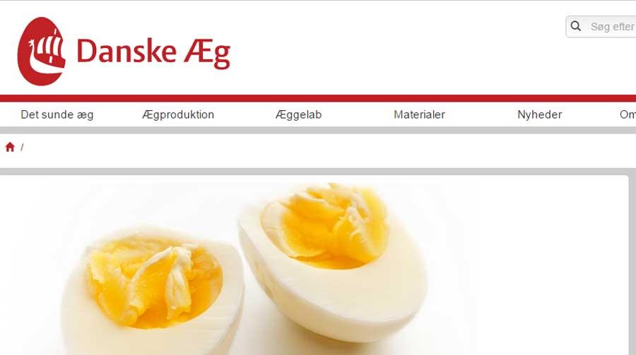 forskellige typer æg